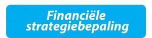 financiele strategiebepaling